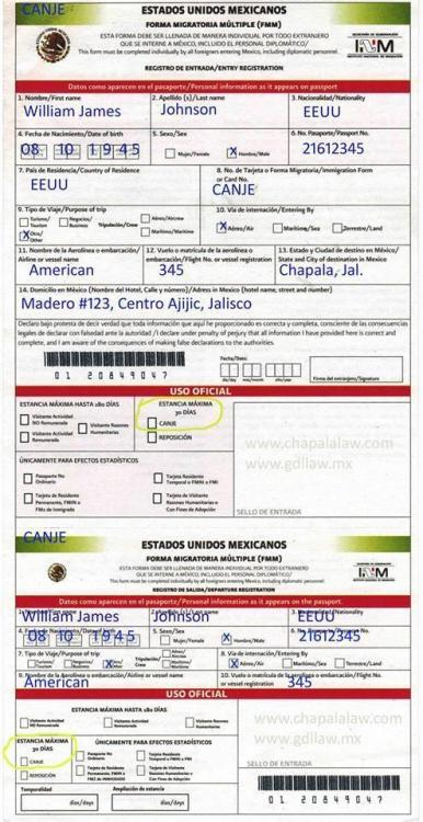immigration form completed fake.jpg