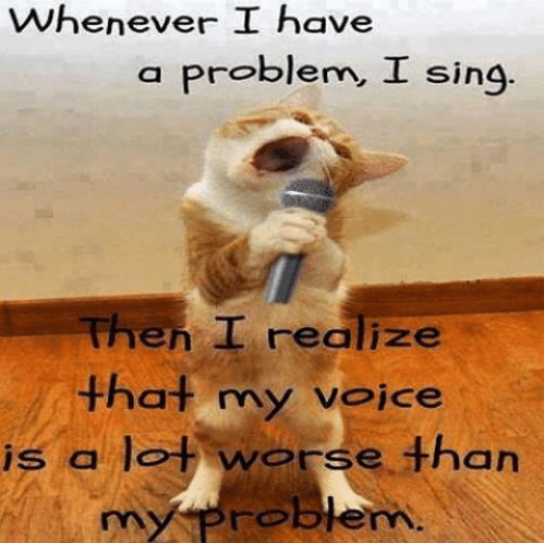 whenever-i-have-a-problem.png.cee122ee989b874c7d60206d0d9de648.png