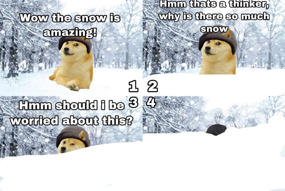 snow-meme-2021-worried.jpg
