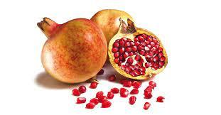 miracle of pomegranate  arilos have hammer will travel A C woodworking school  bingolago 4.jpg